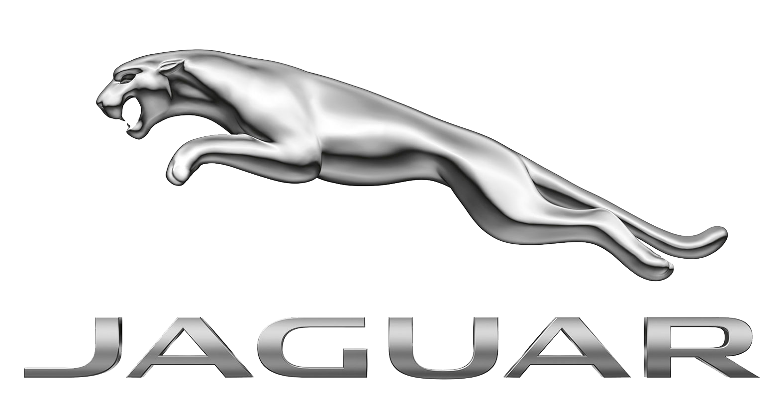 Jaguar revisie
